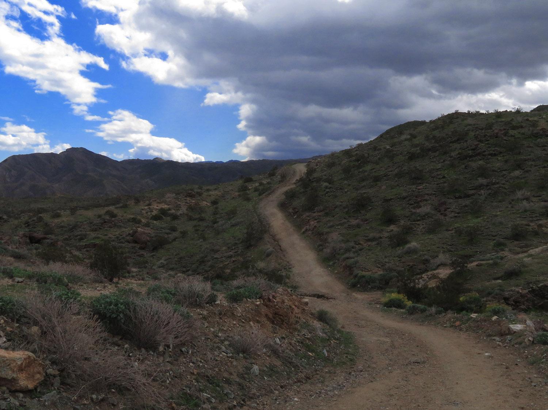 Araby Trail