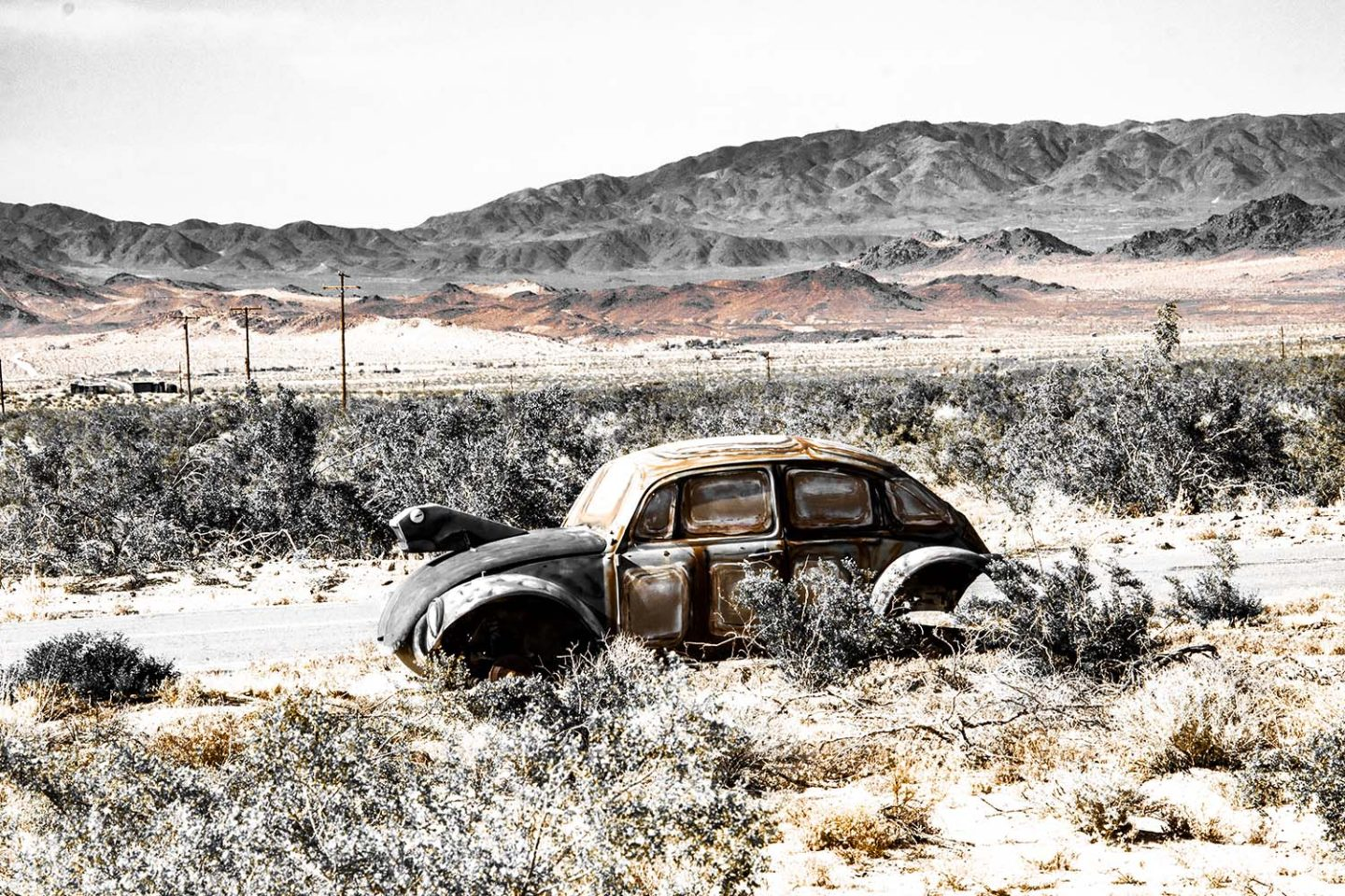 Glass Outhouse Art Gallery | Car in the Desert